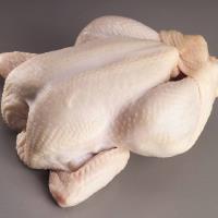 Chicken, Broiler (Frozen)